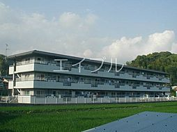 セゾンSAKAMOTOIII[1階]の外観