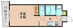 ロイヤル博多駅前[14階]の間取り