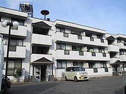サファージュ高石 A棟[2階]の外観