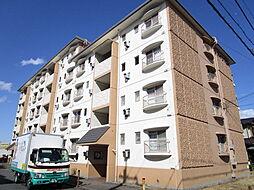 滋賀県栗東市坊袋の賃貸マンションの外観