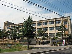 岩岡小学校 約770m