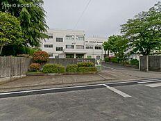 町田市立金井小学校 距離180m