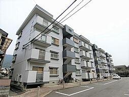 森田ハイツ[205号室]の外観