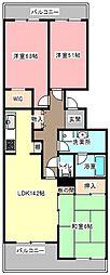 静岡県浜松市中区広沢1丁目の賃貸マンションの間取り