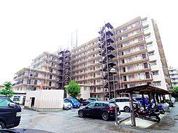 埼玉県朝霞市栄町3丁目の賃貸マンションの外観