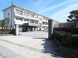矢作中学校2500m
