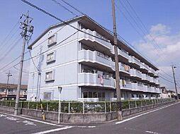 愛知県安城市東栄町4丁目の賃貸マンションの外観