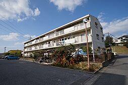 Fujisaki ハイム[3階]の外観