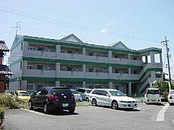 愛知県一宮市開明字北釈迦堂の賃貸マンションの外観