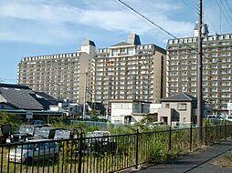 滋賀県守山市今浜町の賃貸マンションの外観