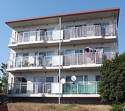 静岡県三島市加茂の賃貸マンションの外観
