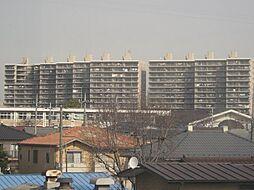 栃木県宇都宮市戸祭3丁目の賃貸マンションの外観