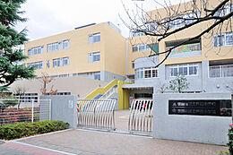 芦花小学校 中学校 (780m)