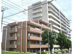 札幌市白石区平和通5丁目北