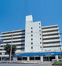 埼玉県入間市河原町の賃貸マンションの外観