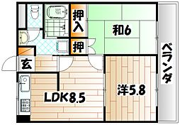ロックシャローハイム[2階]の間取り