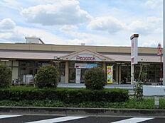 ピーコックストア玉川上水店まで500m、ふだんの食品のお買物はこちらへ。モノレールが通っている芋窪街道沿いにあります。