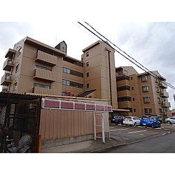 新潟県新潟市中央区紫竹山3丁目の賃貸マンションの外観
