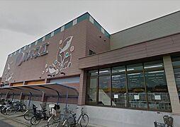 カネスエ国府宮店