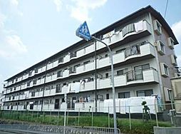 隆豊ハイツ[4階]の外観
