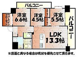 ベルステージ須賀町[3階]の間取り