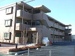 栃木県小山市駅南町3丁目の賃貸マンションの外観