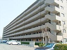 インペリアル大賀[5階]の外観
