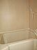 風呂,ワンルーム,面積16.37m2,賃料5.0万円,JR常磐線 亀有駅 徒歩12分,,東京都葛飾区西亀有3丁目31-6