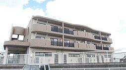 和歌山県岩出市岡田の賃貸マンションの外観