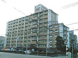第5大成ビル[8階]の外観