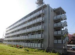 ビレッジハウス亀井野[4階]の外観