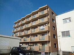 遠州鉄道 新浜松駅 徒歩9分の賃貸マンション