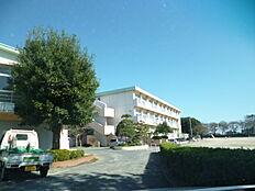 日立市立大沼小学校(342m)