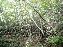 千ヶ滝東区別荘地 土地