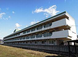 教興寺マンション[3階]の外観