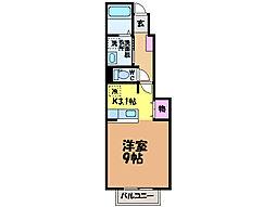 愛媛県松山市今在家1丁目の賃貸アパートの間取り