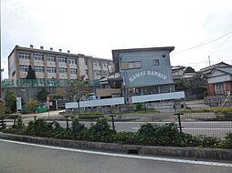 高橋中学校 1500m