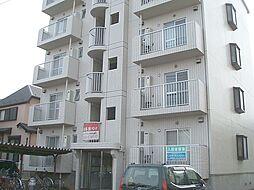 松戸ハイツ[302号室]の外観