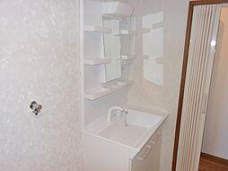 使い勝手の良いシャワー付き洗面台(2019年4月交換)