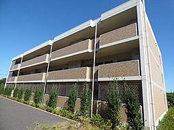 千葉県船橋市夏見5丁目の賃貸マンションの外観