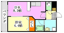 プレジール船橋本町[505号室]の間取り