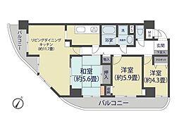 埼玉県蕨市中央3丁目の賃貸マンションの間取り