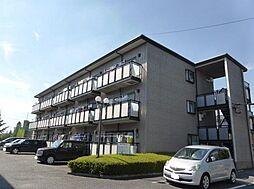 埼玉県さいたま市中央区八王子4丁目の賃貸マンションの外観
