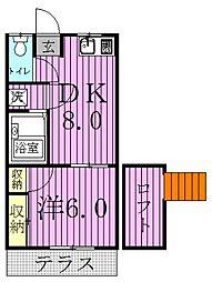 新柏第21レジデンス[1階]の間取り