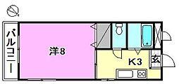 和泉マンション[303 号室号室]の間取り