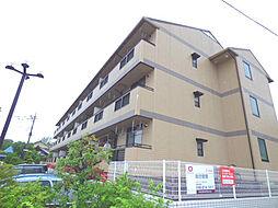 ヴァンベール富士美[2階]の外観