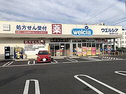 ウエルシア豊田緑ケ丘店まで382m
