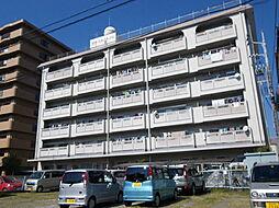 高須スカイハイツ[503号号室]の外観