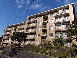 鎌倉グリーンハイツA−4号棟[201号室]の外観