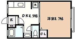 兵庫県神戸市東灘区岡本6丁目の賃貸マンションの間取り